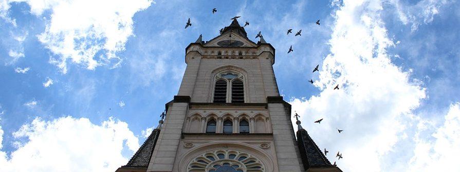 Métodos y Control de palomas