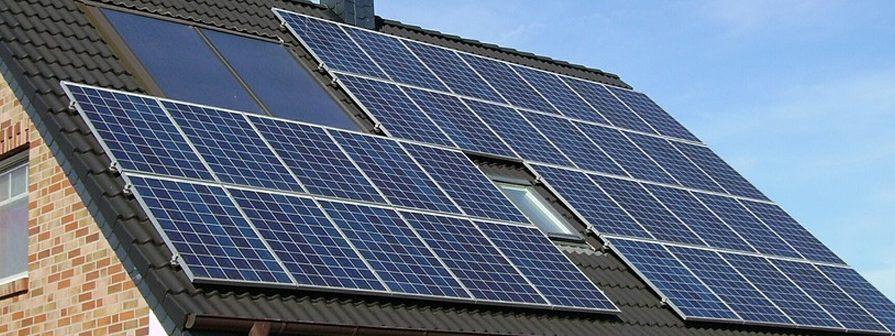 Control de aves en Paneles solares